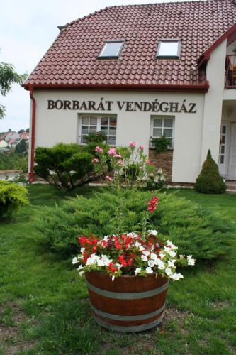 Szállás Eger - Borbarát Vendégház
